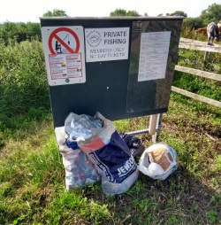 Winthorpe rubbish - June 2019